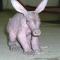 super-aardvark