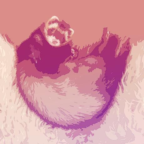 metaru omochi's avatar