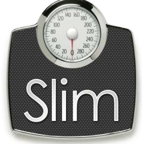 slim-template