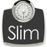 slim-template logo