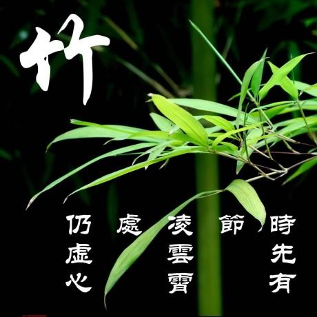 likebamboo