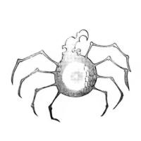 @Arachne