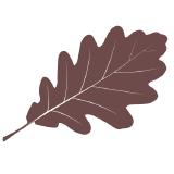 acornjs logo