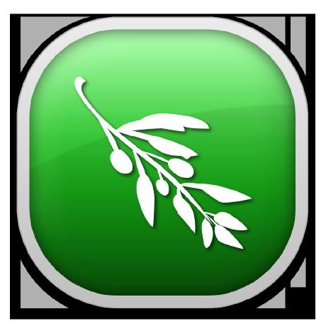 olive-editor