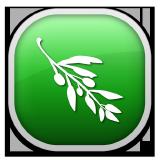 olive-editor logo