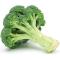 @broccoli-lang