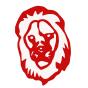 @LionSolution