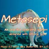 metasepi logo
