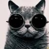 ejs-compiled-loader