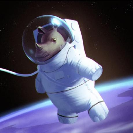 Space-Rhino