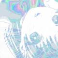 Sora Morimoto