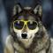 drywolf