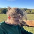 sunset-developer