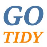 gotidy logo