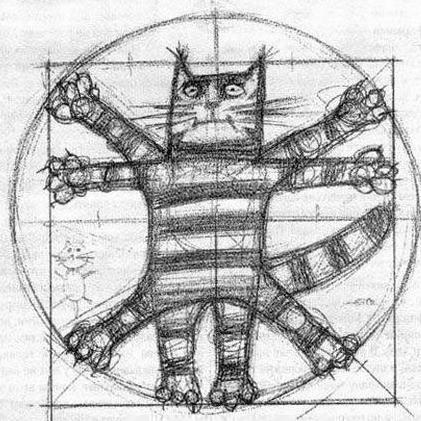 Bobcatlab