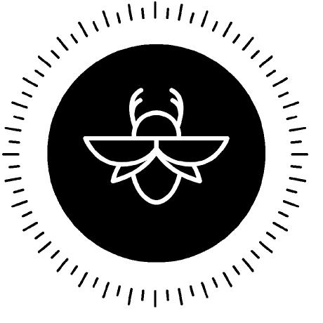 Data Beetle