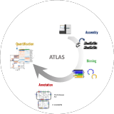 metagenome-atlas logo
