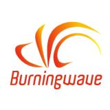 burningwave logo