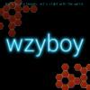 Zhuoyun Wei (wzyboy)