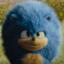 @Sonic-The-Hedgehog-LNK1123