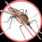 muggenhor