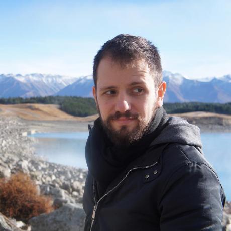 Vinicius Gerevini