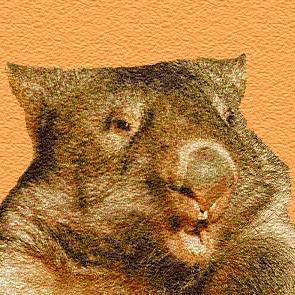 wombat2k