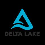 delta-io logo