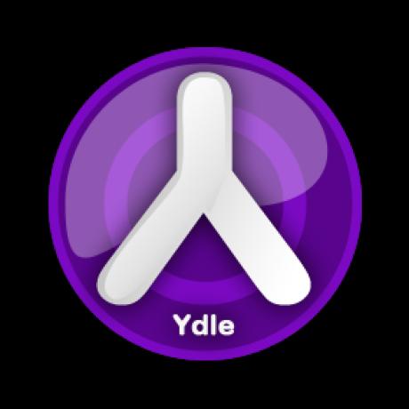 Ydle, Symfony organization