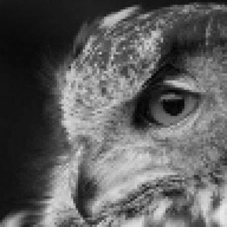 constverum/ProxyBroker Proxy [Finder | Checker | Server]  HTTP(S