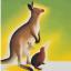 @australia-new-zealand-hpc-educators