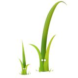 twigphp logo