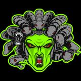sthenauth logo