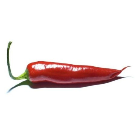 chiliproject