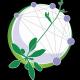 Arabidopsis-Information-Portal