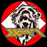 plaimi logo