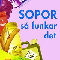 Sopor-