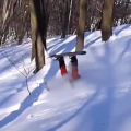tarzak