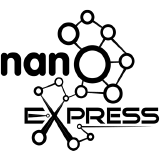 nanoexpress logo