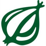 theonion logo