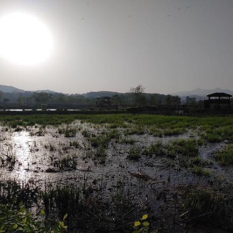 @Jeongyong-park