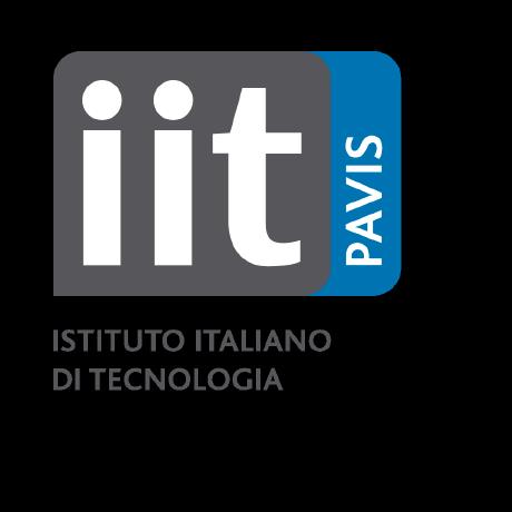 IIT-PAVIS