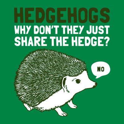 Avatar of atomic-hedgehog