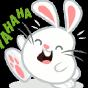@Rabbit523