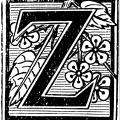 Zachary Chavez