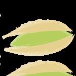 pistacheio