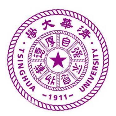 TsinghuaAI