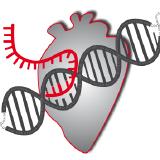dieterich-lab logo