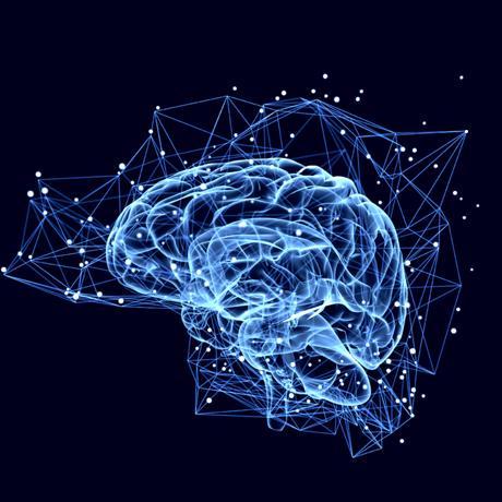 NeuroForLunch