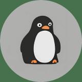RandomCoderOrg logo